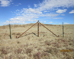 Reeverts Fencing LLC can come and replace just braces in old fence lines to help get the longest life out of a tired fence.